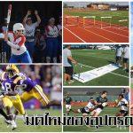 AAE Sports & Athletic Field Equipment มิติใหม่ของอุปกรณ์กีฬา